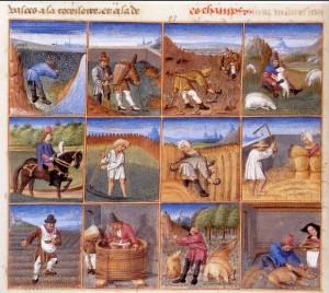 calendrier des travaux au moyen age -rustican -1306